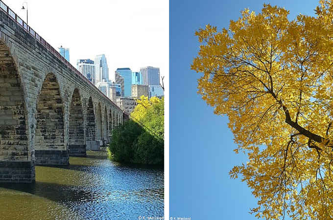Autumn leaves by the Stone Arch Bridge, Minneapolis