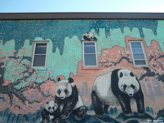 Panda street art, Eat Street, Minneapolis