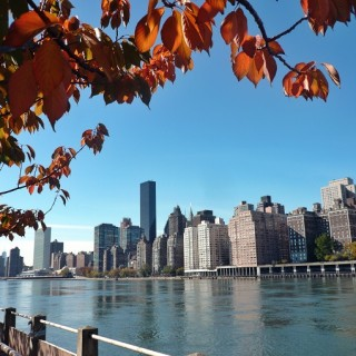 Roosevelt Island: A Spot of Intrigue in New York City's East River