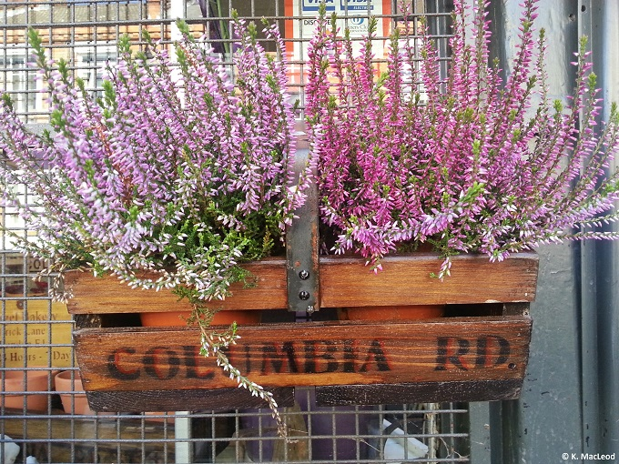 Columbia Rd Window Box