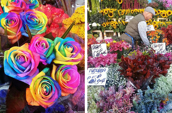 Multicoloured roses at Columbia Road Flower Market