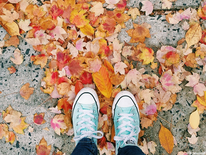 Standing in fallen leaves