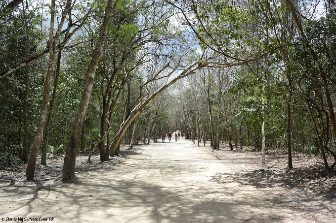 Roads at Coba, Mexico