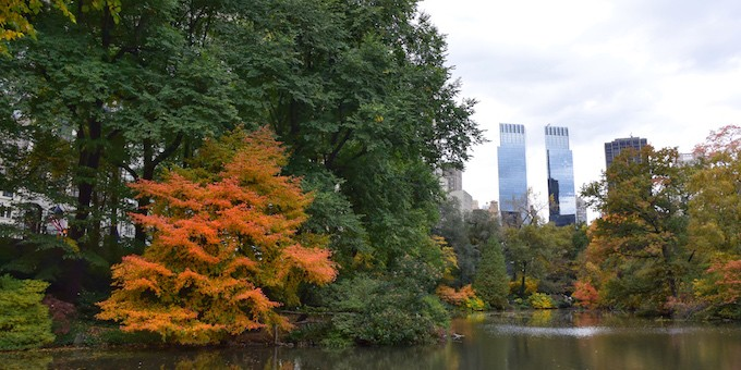 Autumn in New York City