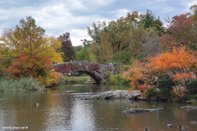Autumn colours in Central Park