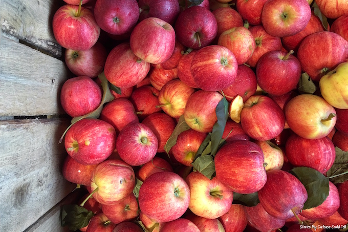 Red apples in cart