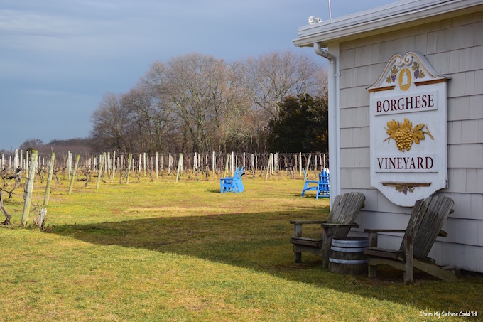 Borghese Vineyard Long Island