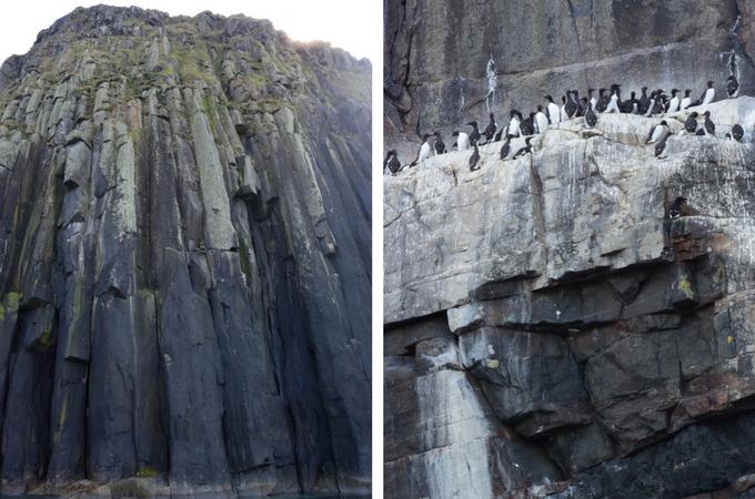 Shiant Cliffs