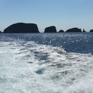 A Boat Trip to the Shiant Isles – On Video!