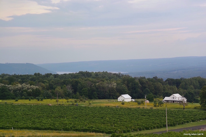 Finger Lakes Wineries Keuka Lake