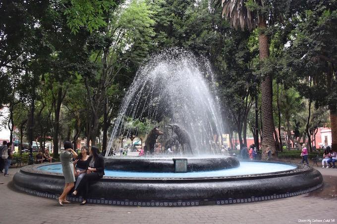 Coyoacan park Mexico City