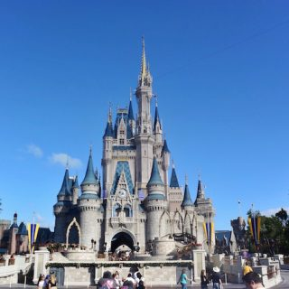 A Dream Come True at Walt Disney World, Florida