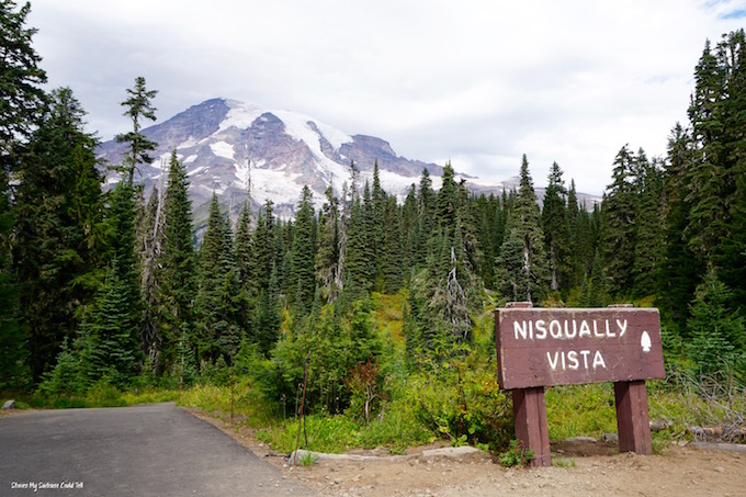 Nisqually Vista Trail Mount Rainier