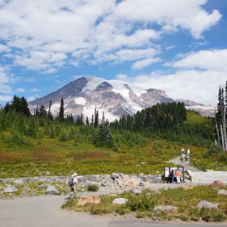 A Day Trip to Mount Rainier National Park