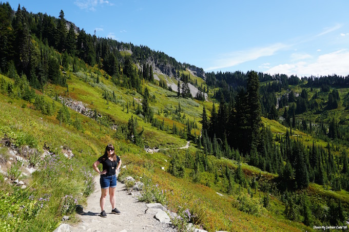 Skyline Trail Mount Rainier National Park